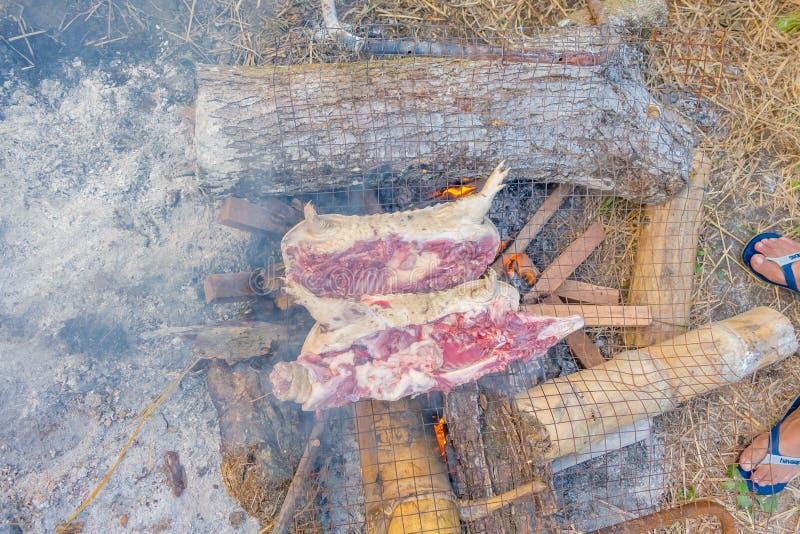 烤野生犰狳在户外使用煤炭准备它 库存照片