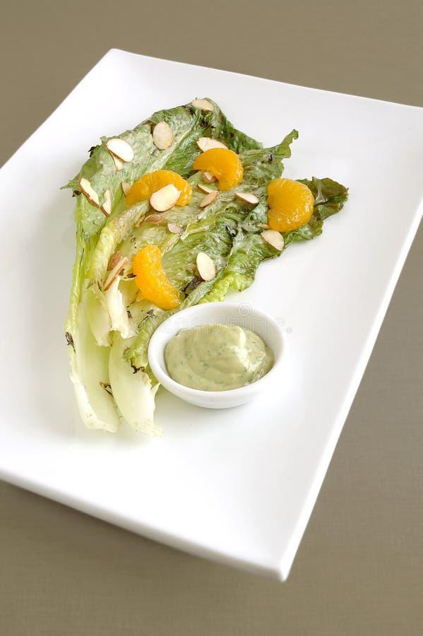 烤长叶莴苣沙拉 库存图片