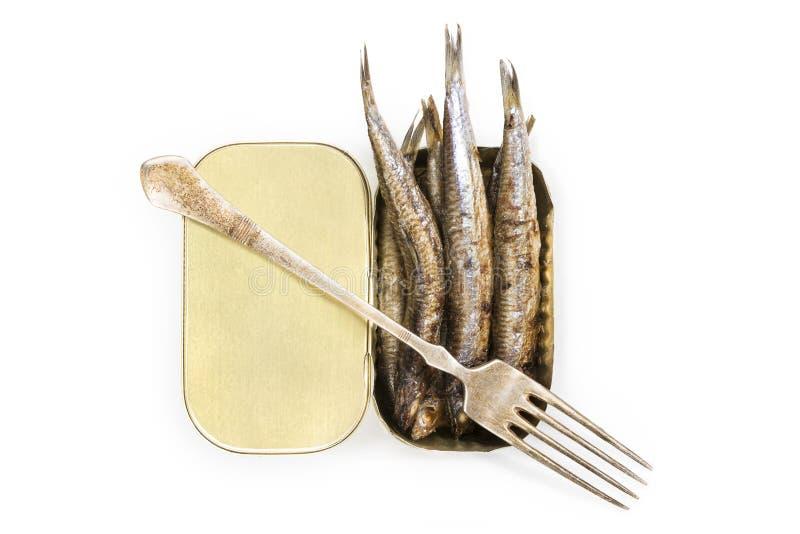 烤鲥鱼 免版税库存图片
