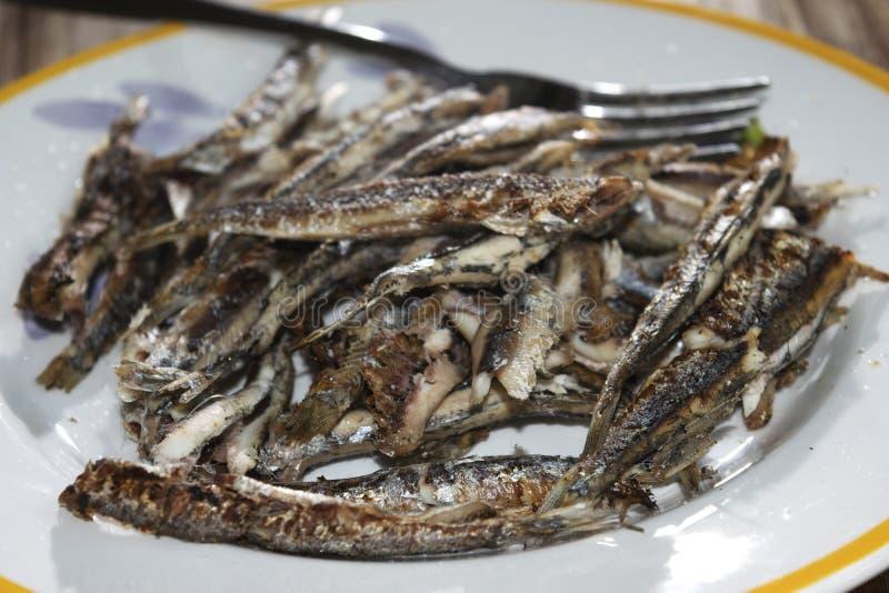 烤鲥鱼 库存照片