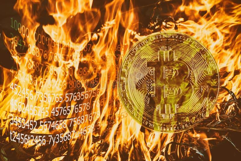 烧与开采双重采矿金子Bitcoin cryptocurrency采矿的cryptocurrency橙色火焰 免版税库存图片