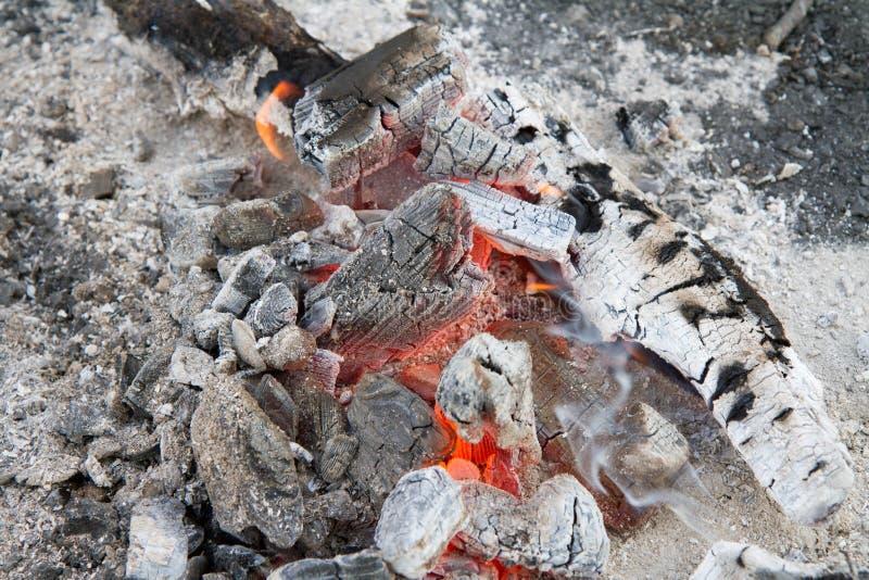 烧光的篝火 库存照片