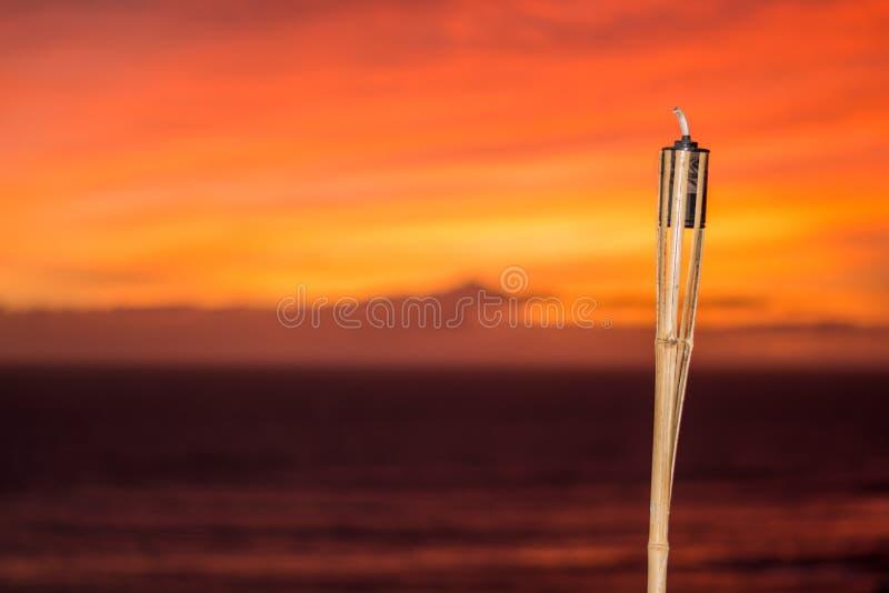 烧在日落的香茅油灯 免版税库存照片