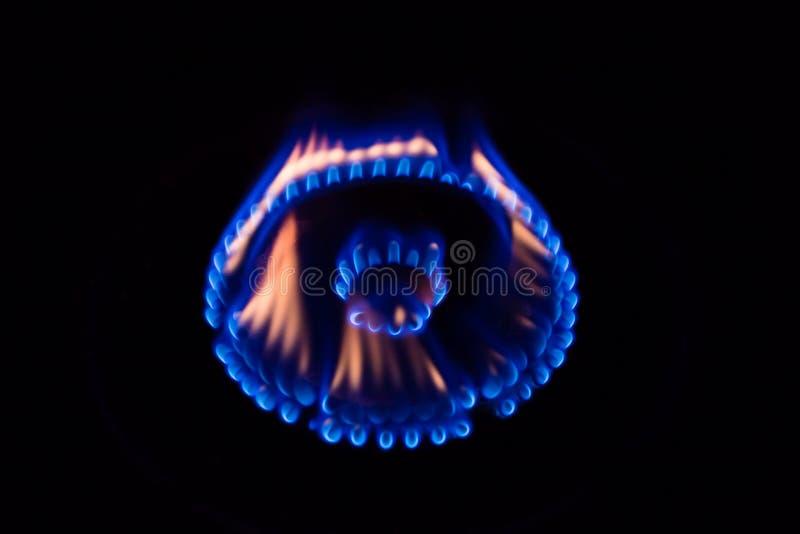烧在煤气炉的火焰 免版税图库摄影