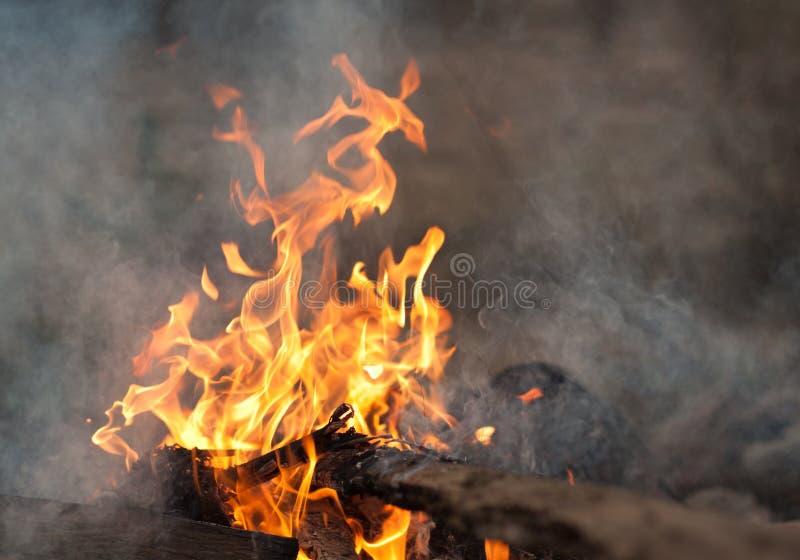 烧在篝火的板条 图库摄影