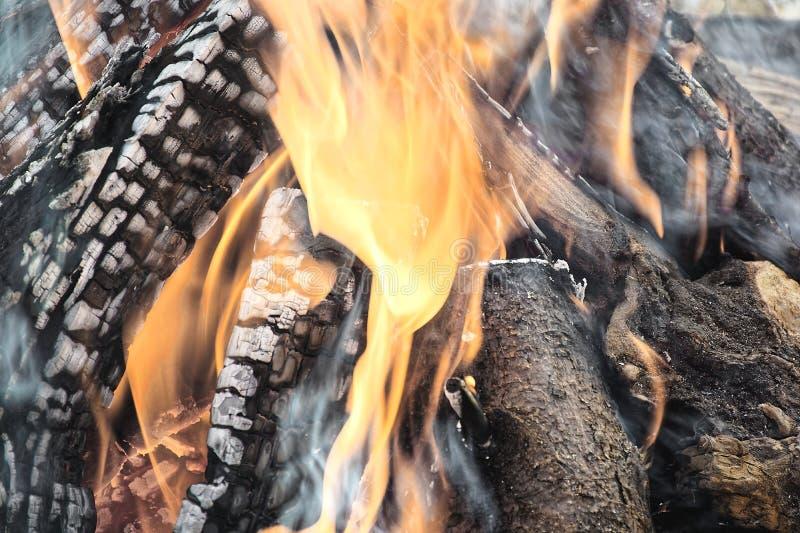 烧木的日志引起橙色火焰和白色烟 库存图片