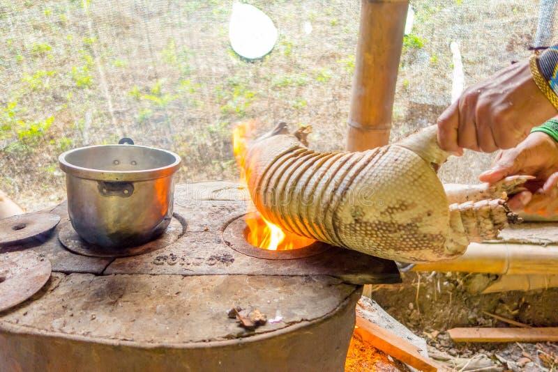 烧犰狳的皮肤的僧人,食物为午餐做准备使用火 免版税库存照片