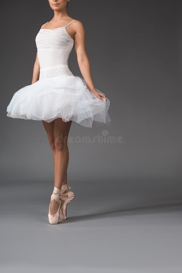 热切站立典雅的芭蕾舞女演员 免版税库存照片