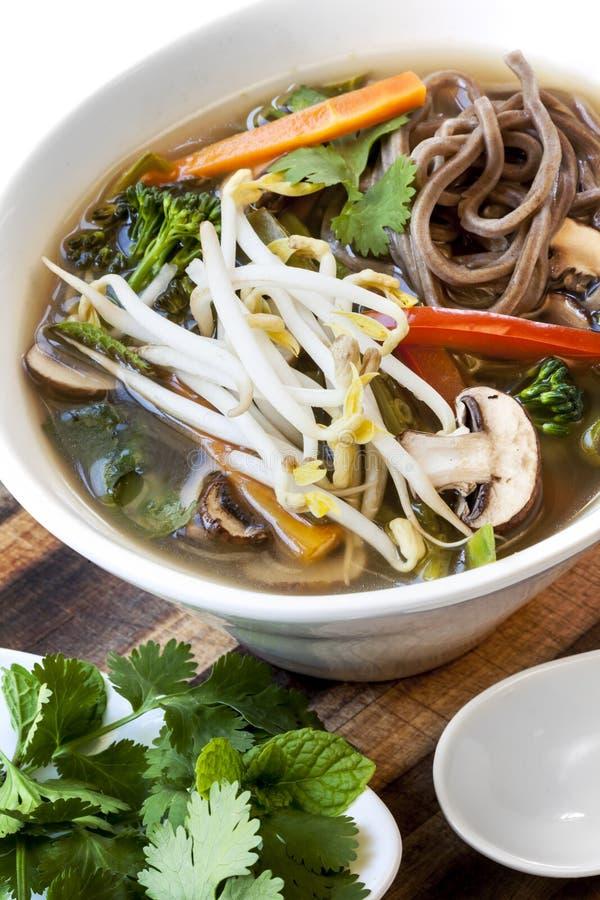 热和酸蔬菜汤用Soba面条和豆芽 图库摄影