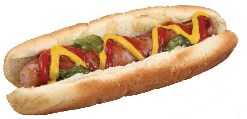 热小圆面包的狗 图库摄影