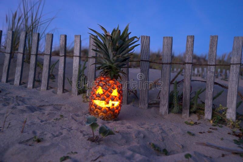 热带万圣夜菠萝 库存照片