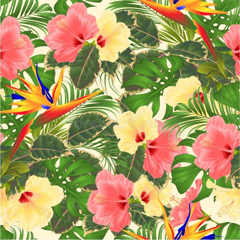 热带与美好的桃红色和黄色木槿和鹤望兰棕榈,philode的花无缝的纹理花束植物布置 皇族释放例证