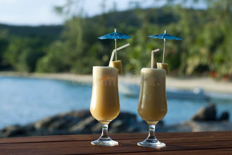 热带假期鸡尾酒 库存图片