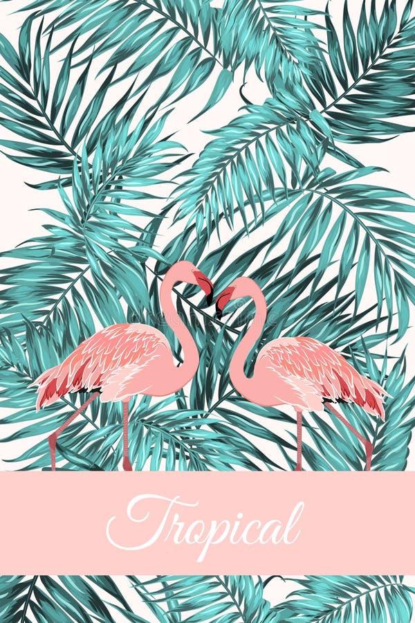 热带卡片密林留给火鸟鸟夫妇 向量例证
