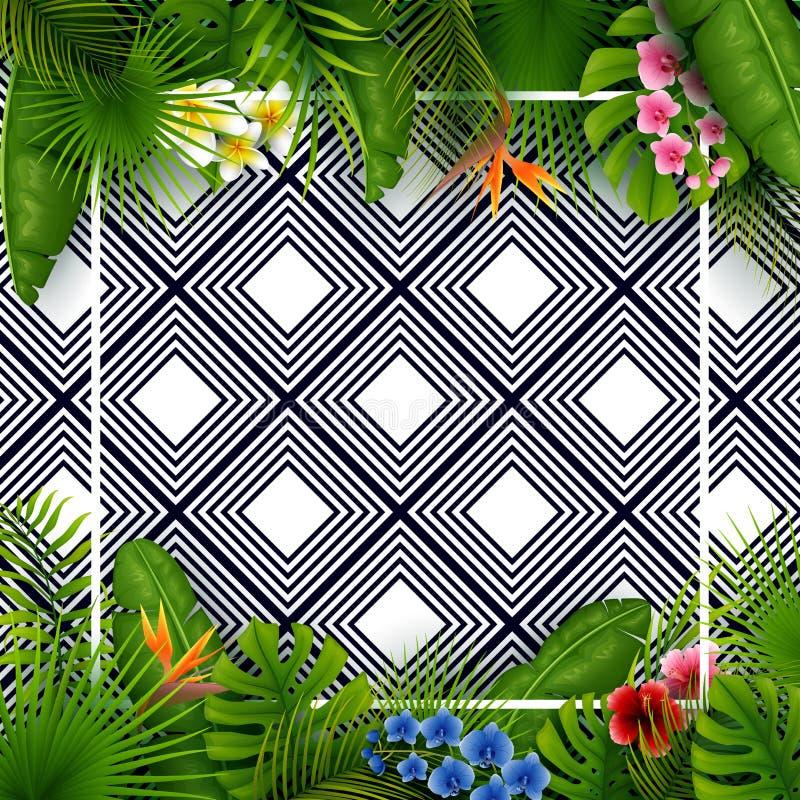 热带叶子和花与空的框架在黑白样式背景摆正 皇族释放例证