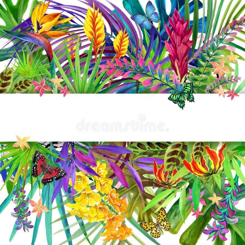 热带叶子和花背景 皇族释放例证