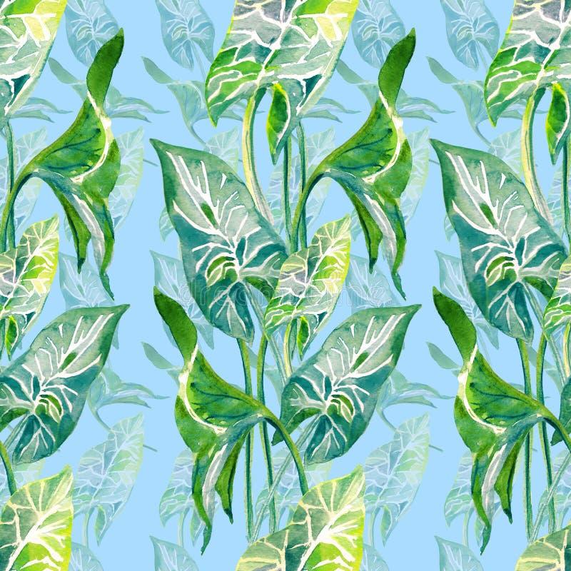 热带叶子无缝的垂直的样式 在蓝色背景隔绝的手拉的watercolo例证 库存例证
