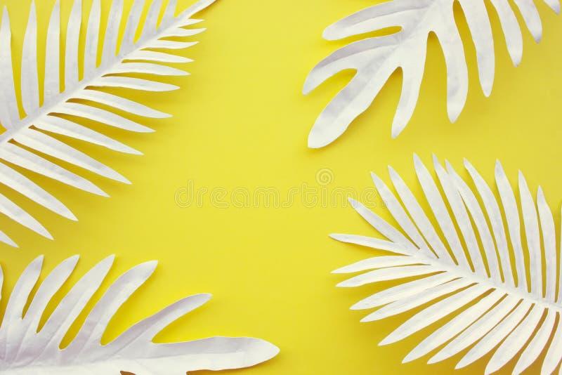 热带叶子的汇集,叶子植物有彩色空间背景 抽象叶子装饰设计 异乎寻常的自然艺术 库存图片
