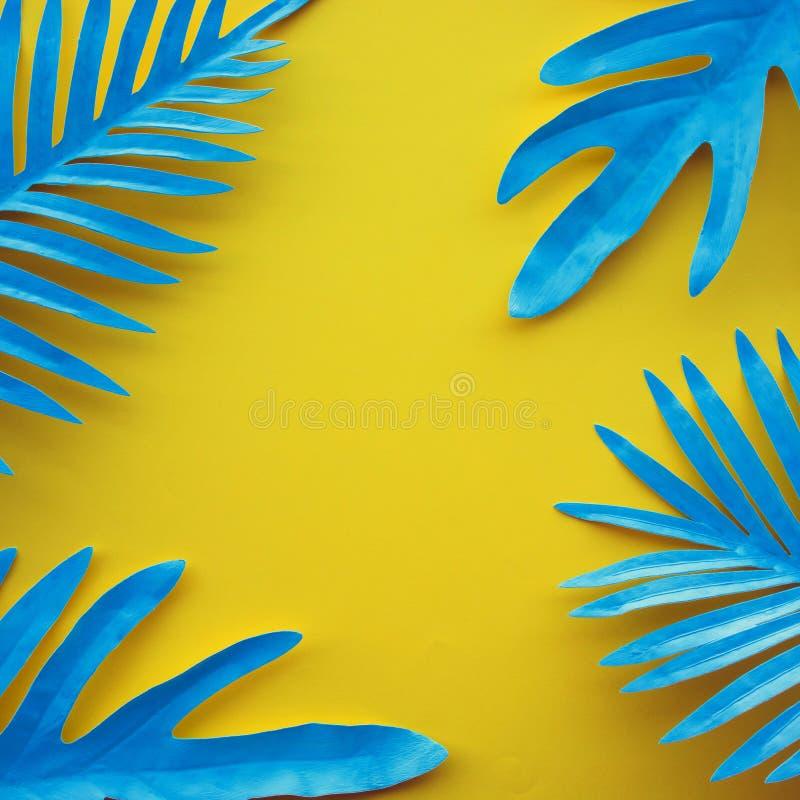 热带叶子的汇集,异乎寻常的颜色的叶子植物有空间背景 库存图片