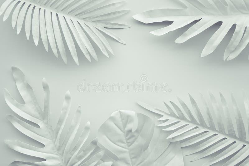 热带叶子的汇集,白色的叶子植物有空间背景 抽象叶子装饰设计 异乎寻常的自然艺术 库存图片