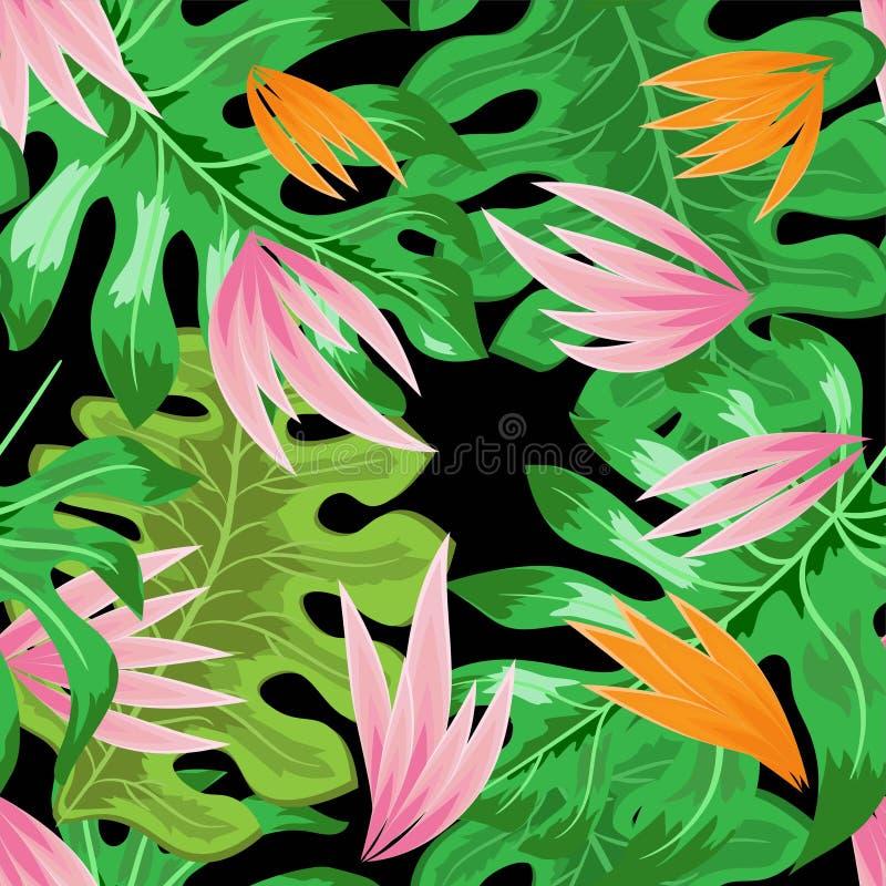 热带叶子花无缝的传染媒介例证eps 10 皇族释放例证