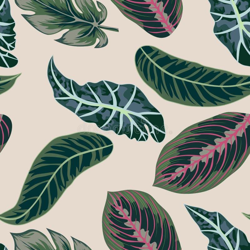 ?? 热带叶子,密林离开无缝的传染媒介花卉样式背景 向量例证