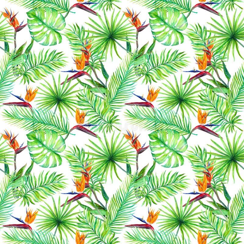 热带叶子,异乎寻常的鸟花 模式重复 水彩 皇族释放例证