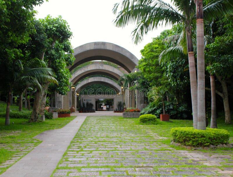 热带和次级热带树木园 库存图片