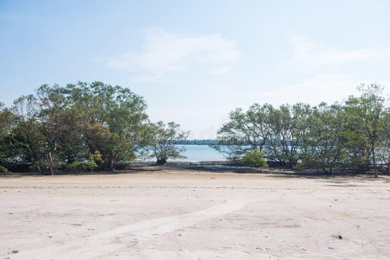 热带在海的海滩风景视图 库存照片