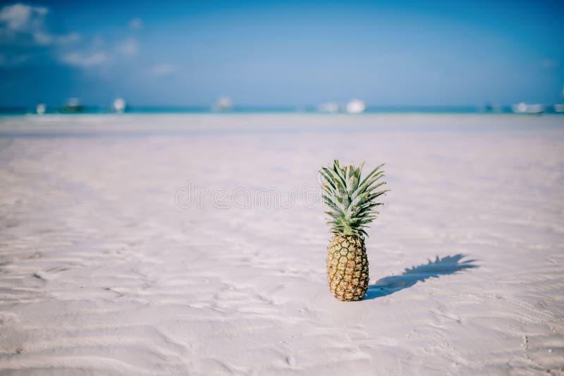 热带夏天欢欣 在白色沙子海滩的新鲜的菠萝 免版税库存图片