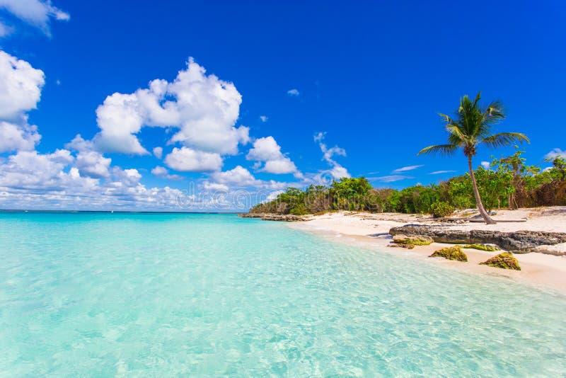 热带天堂绍纳岛加勒比岛在蓬塔卡纳,多米尼加共和国 免版税库存照片