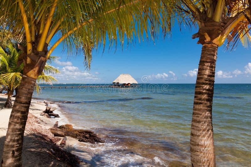 热带天堂视图 免版税库存照片