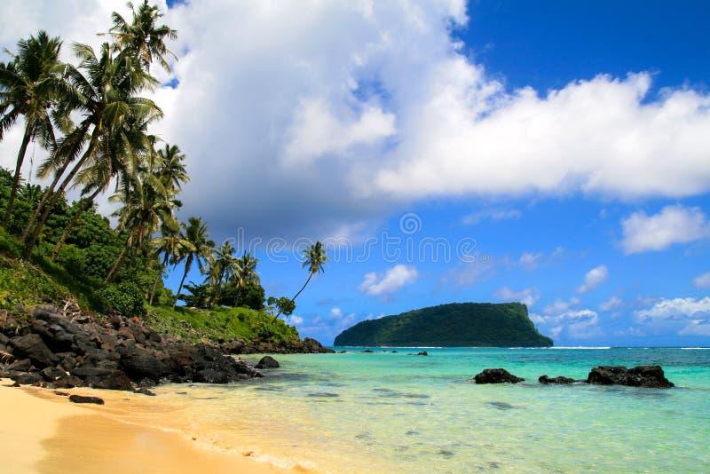 热带天堂seascpape、金黄沙滩与棕榈树和太平洋原始大海  免版税库存图片