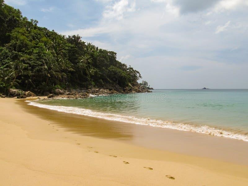 热带密林的美丽的景色有棕榈树和有脚印的沙漠完善的干净的海滩的 免版税库存图片