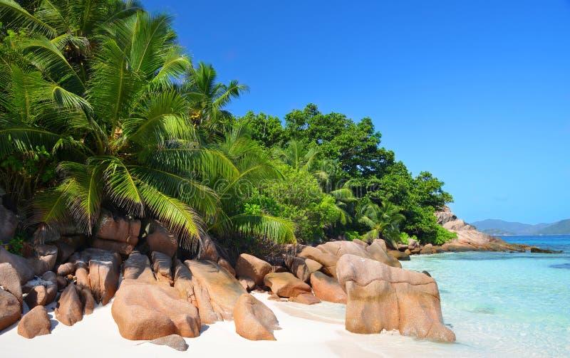 热带岛屿La Digue的海岸,位于印度洋Seyshelles的Anse Sever海滩 免版税库存照片