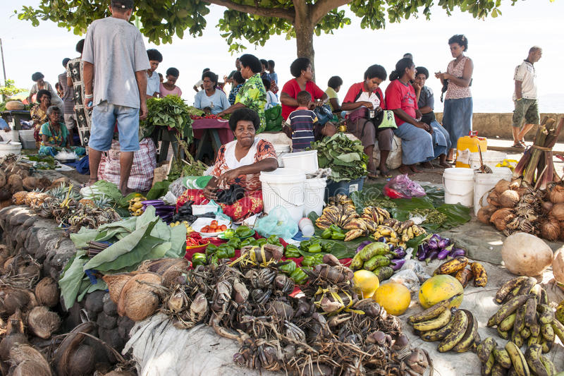 热带市场 库存照片