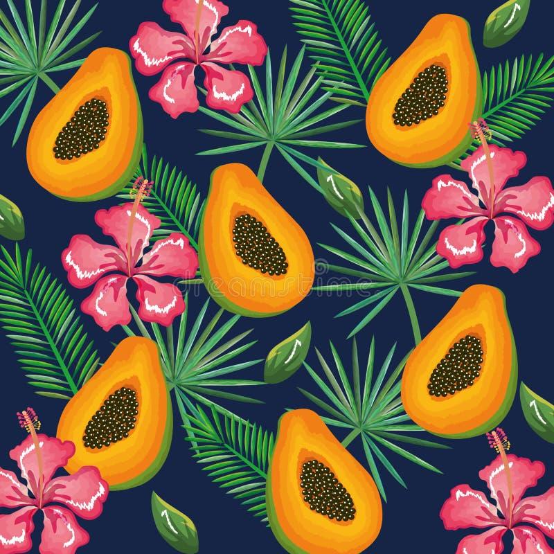 热带庭院用番木瓜 皇族释放例证