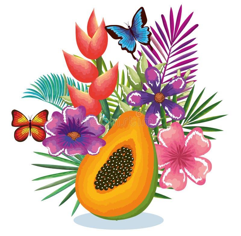 热带庭院用番木瓜 向量例证