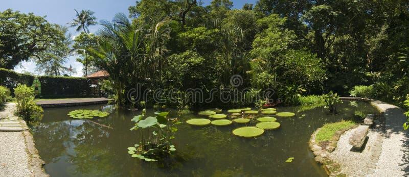 热带庭院,马来西亚 免版税库存图片