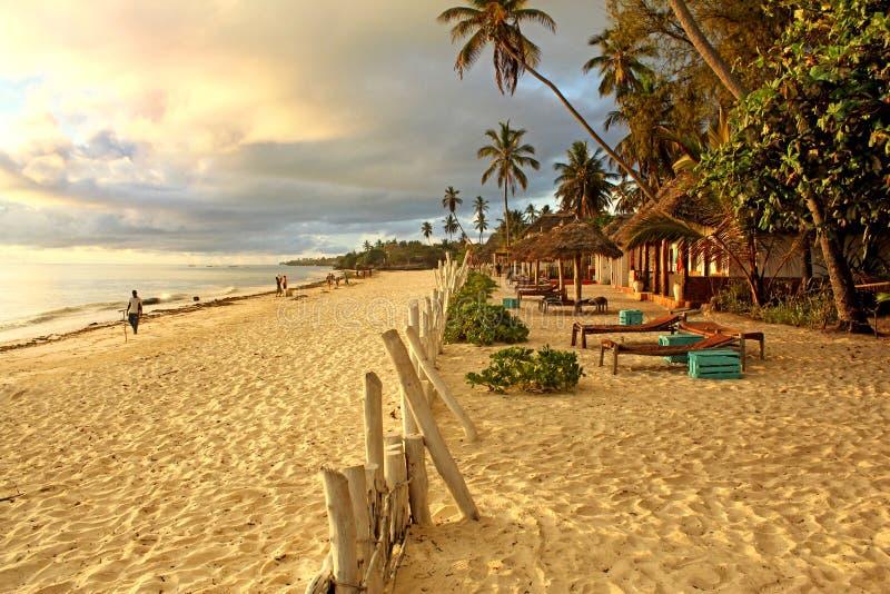 热带异乎寻常的海滩在晴朗的早晨在桑给巴尔 免版税库存图片