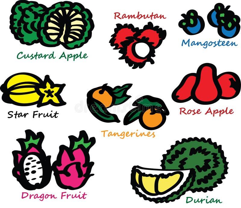 热带异乎寻常的果子 库存例证
