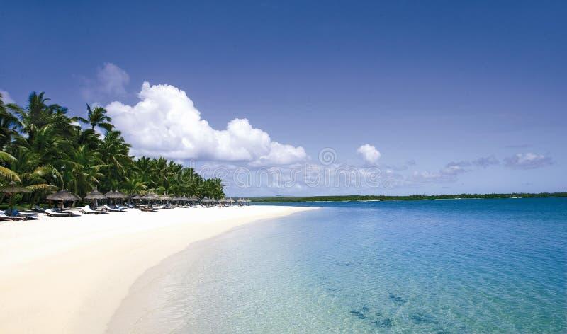 热带惊人的海滩的天堂 免版税库存图片