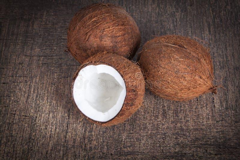 热带成熟椰子 免版税库存图片
