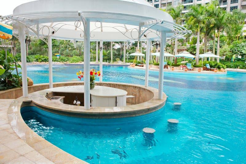 热带手段池 免版税库存照片