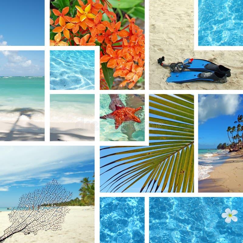 热带拼贴画异乎寻常的旅行 免版税库存照片