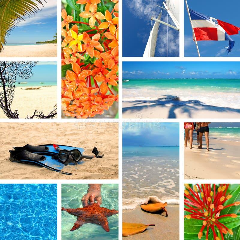 热带拼贴画异乎寻常的旅行 免版税库存图片