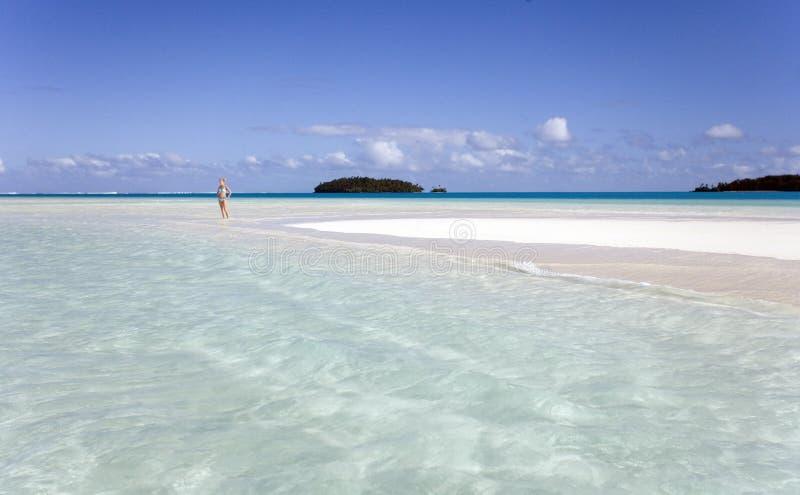 热带斐济的天堂 免版税库存照片