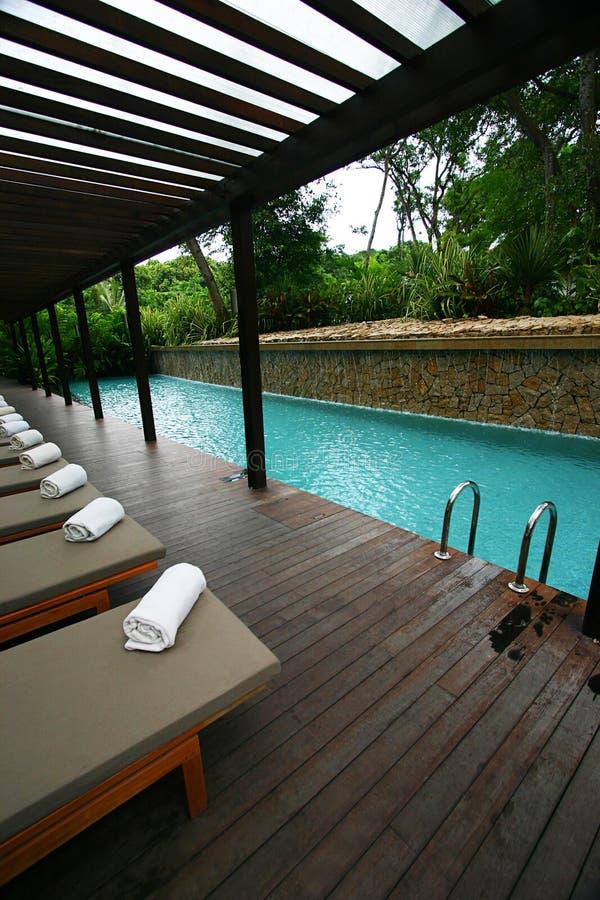 热带旅馆园艺的池手段的游泳