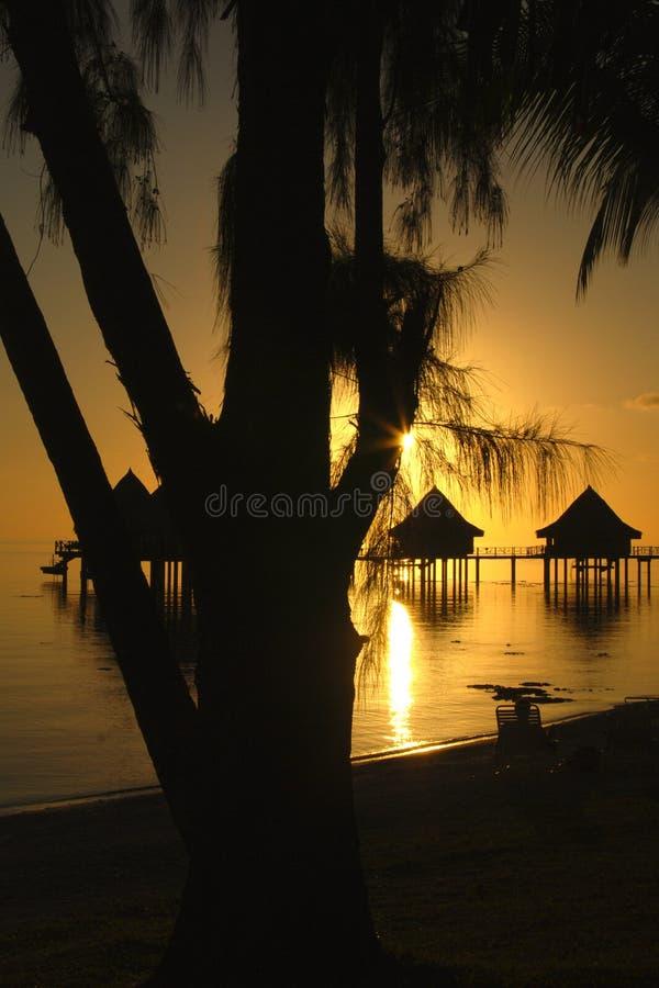 热带日落的看法在波里尼西亚 免版税库存照片