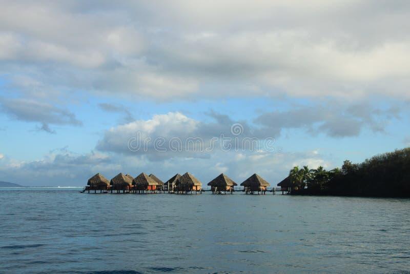 热带是。假日 免版税库存照片